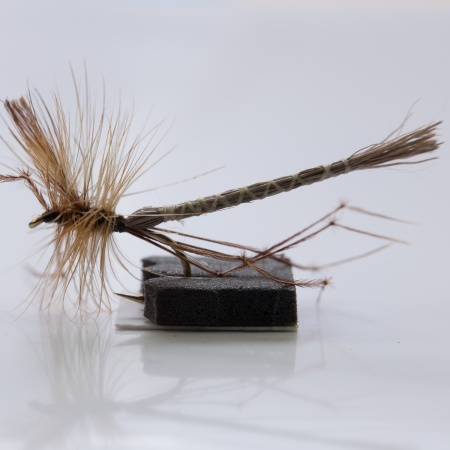 Daddy Long Legs  Extended Body Dry Fly
