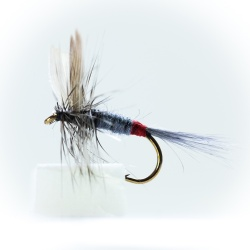 Iron Blue Dun Dry Fly
