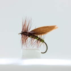 Brown winged Olive Caddis Dry Fly by the dozen