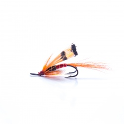 Allys Shrimp standard Double