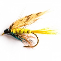 Wet Fly Multi Packs