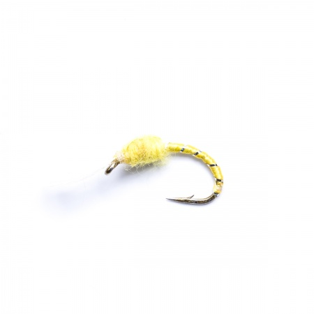 Yellow buzzer wet fly