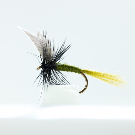 Dark olive Dry Fly by the dozen