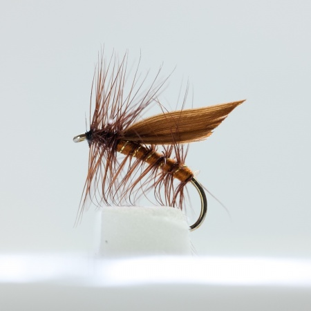 Brown winged Brown Caddis Dry Fly by the dozen