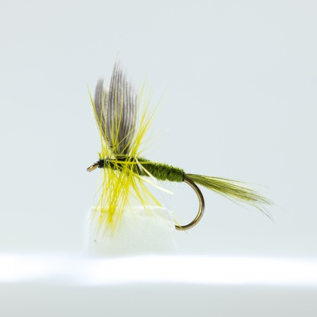 Olive dun Dry Fly by the dozen