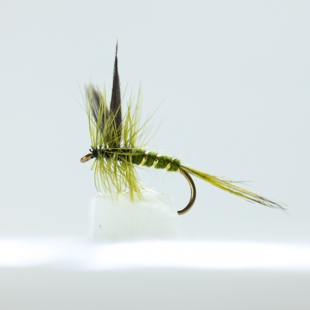 Rough Olive Dry Fly by the dozen