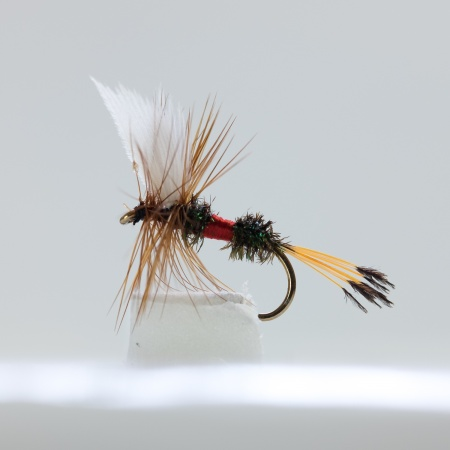 Royal Coachman Dry Fly by the dozen