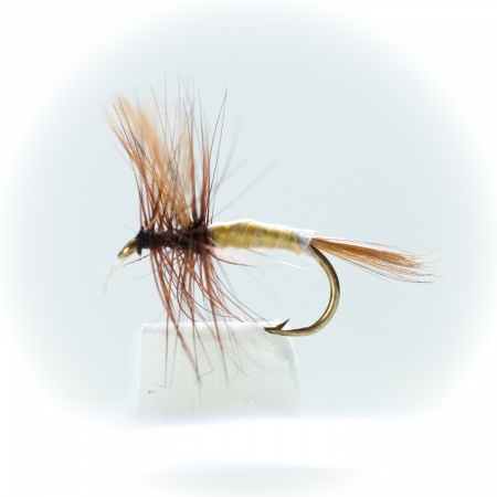 Sherry Spinner Dry Fly by the dozen