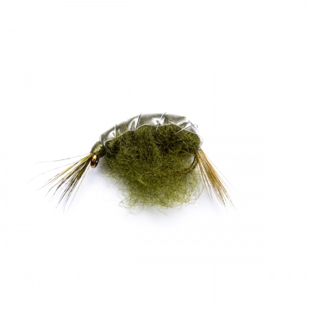 Olive Weighted Shrimp