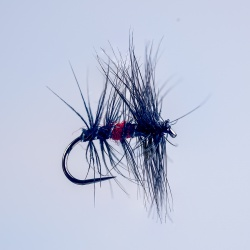Barbless Bibio Dry Fly