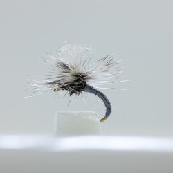 10 KLINKHAMMERS Dry Fishing Flies 10 Assorted Colours size 14 by Dragonflies