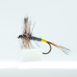 Adams Female  Dry Fly by the dozen