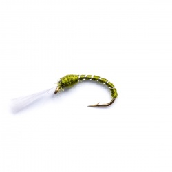 Olive buzzer wet fly