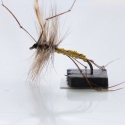 Daddy Long Legs  Dry Fly by the Dozen