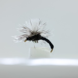 Black Klinkhammer Dry Fly