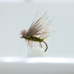 Elk Hair Caddis Dry Fly by the dozen