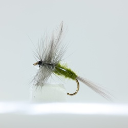 12 Classic Olive Dry Flies 6 patterns