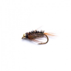 Gold Head Diawl Bach Nymph by the dozen