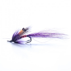 Allys Shrimp Purple Double