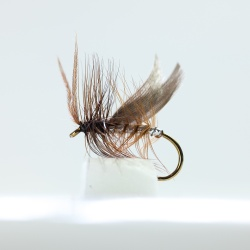 Silver  winged Brown Caddis Dry Fly by the dozen