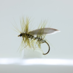 Silver  winged Olive Caddis Dry Fly by the dozen