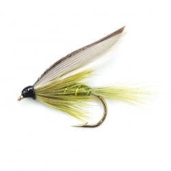 Rough Olive  Wet Fly