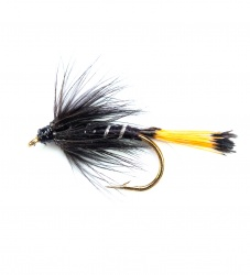 Black Pennel wet fly per dozen
