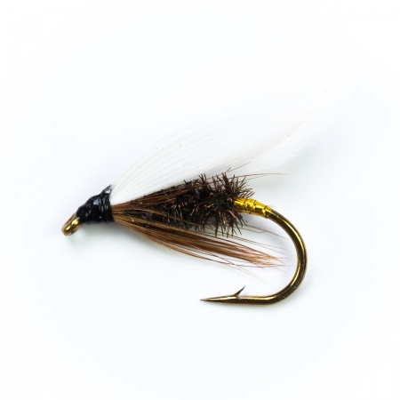 Coachman wet fly per dozen